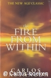 Castaneda, C.- The Fire from Within (1998, Touchstone)