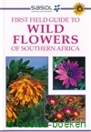 Manning-First Field Guide to Wild Flowers of Southern Africa