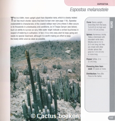 Ken Preston-Mafham. - 500 Cacti - Species and Varieties in Cultivation. - (blz. 117).