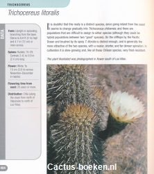 Ken Preston-Mafham. - 500 Cacti - Species and Varieties in Cultivation. - (blz. 494).