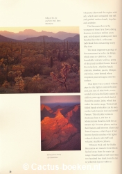 Bill Broyless - Organ Pipe Cactus National Monument (blz 30).