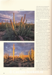 Bill Broyless - Organ Pipe Cactus National Monument (blz 10).