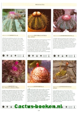 Innes, C. & Glass, C - The illustrated Encyclopedia of Cacti (1991) (blz 189).