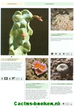 Innes, C. & Glass, C - The illustrated Encyclopedia of Cacti (1991) (blz 150).